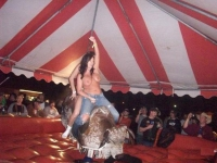 Mechanical Bull Flashing 05