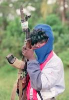 Militia 31