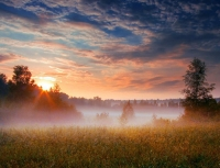 Misty_mornings_03