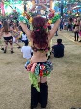 Music Festivals 24