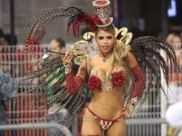 Rio Carnival 46