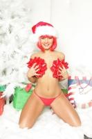 Sandra Romain Does Christmas 09