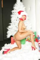 Sandra Romain Does Christmas 16