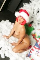 Sandra Romain Does Christmas 19