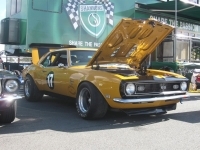 Shannons Sports And Muscle Car Spectacular 025