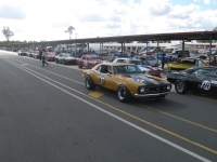 Shannons Sports And Muscle Car Spectacular 054
