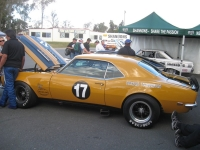 Shannons Sports And Muscle Car Spectacular 089