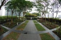 Singapore 26