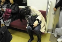 Sleeping On The Subway 17