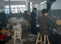 Spark Plug Factory In China 04