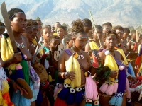Swaziland Virgin Parade