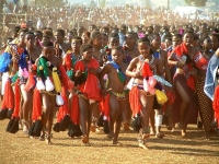 Swaziland_virgin_parade_02