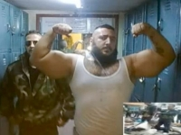 Synthol Abusers 22