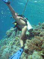 Underwater 13