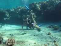 Underwater 30