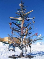 Unusual Christmas Trees 15