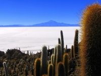 Uyuni Salt Lake 06