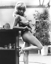 Vintage Porn 22