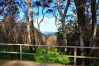 Western Australia By Orsm 20