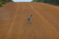 Western Australia By Orsm 30
