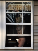 Window Voyeuring 11