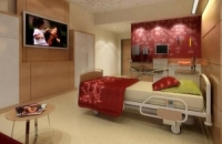 Worlds Most Luxurious Hospital Concept