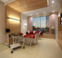Worlds Most Luxurious Hospital Concept 06