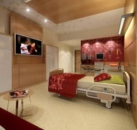 Worlds Most Luxurious Hospital Concept 29
