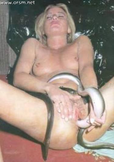 порно фото со змеёй