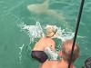 Aussie Risks His Life To Antagonise A Shark