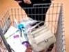 Busted Shoplifter Was Stealing Enough To Open Her Own Shop