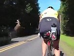 Cyclist Very Nearly Get Taken Out By A Flying Dear