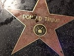 Dog Shitting On A Trumps Star Isn't Really Funny Or Clever
