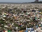 Dominican Republic Beaches Are Polluted And Disgusting