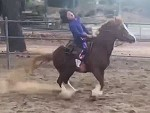 Experiences Her First Horse Riding Accident And Its Hilarious