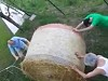 Farmers Spectacularly Lose A Hay Bail
