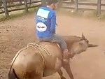 Horse Can't Throw The Rider So Tries Something Else