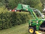 Ingenious Way To Trim The Hedges