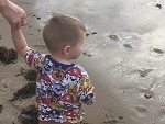Little Dude Experiences The Dangers Of The Beach