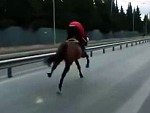 Pays The Price For Riding A Horse On The Open Road