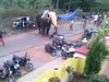 Pissed Off Elephant Goes On A Rampage Somewhere In India
