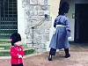 Royal Guard Making A Little Dudes Day Is Disturbingly Heartwarming