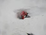 Snow Mobiler Hits Some Soft Powder