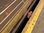 Subway Tracks Not A Good Place To Hangout Buddy