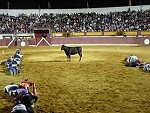They Have To Make It Across The Arena Without The Bull Attacking